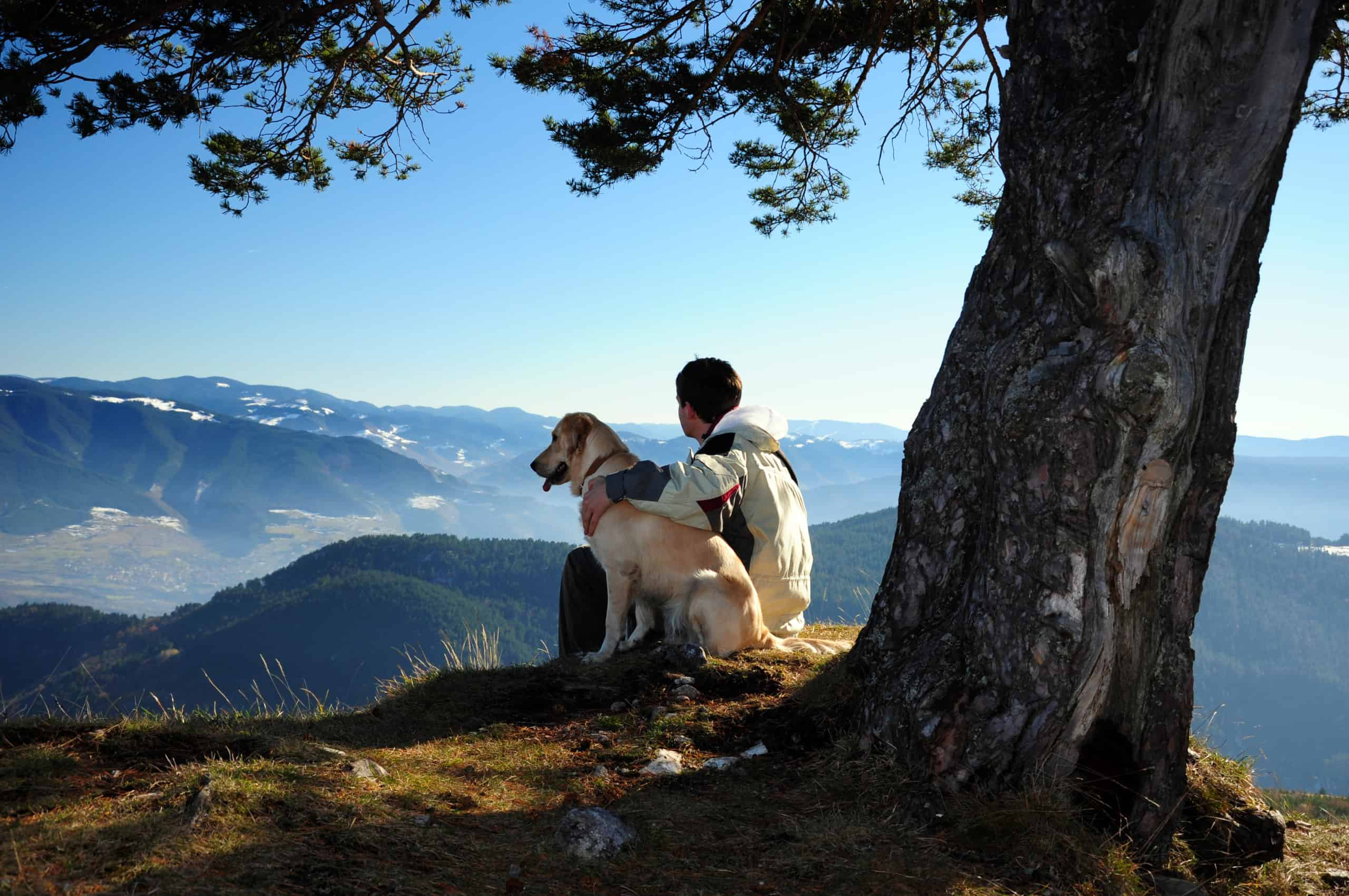 Supporting a Healthy Planet is central to all we do at Yitto Paws.