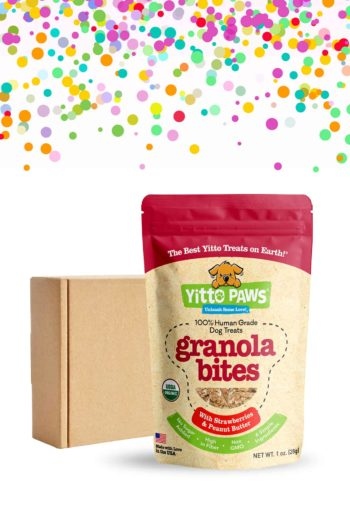 Yitto Paws Granola Bites Welcome Box