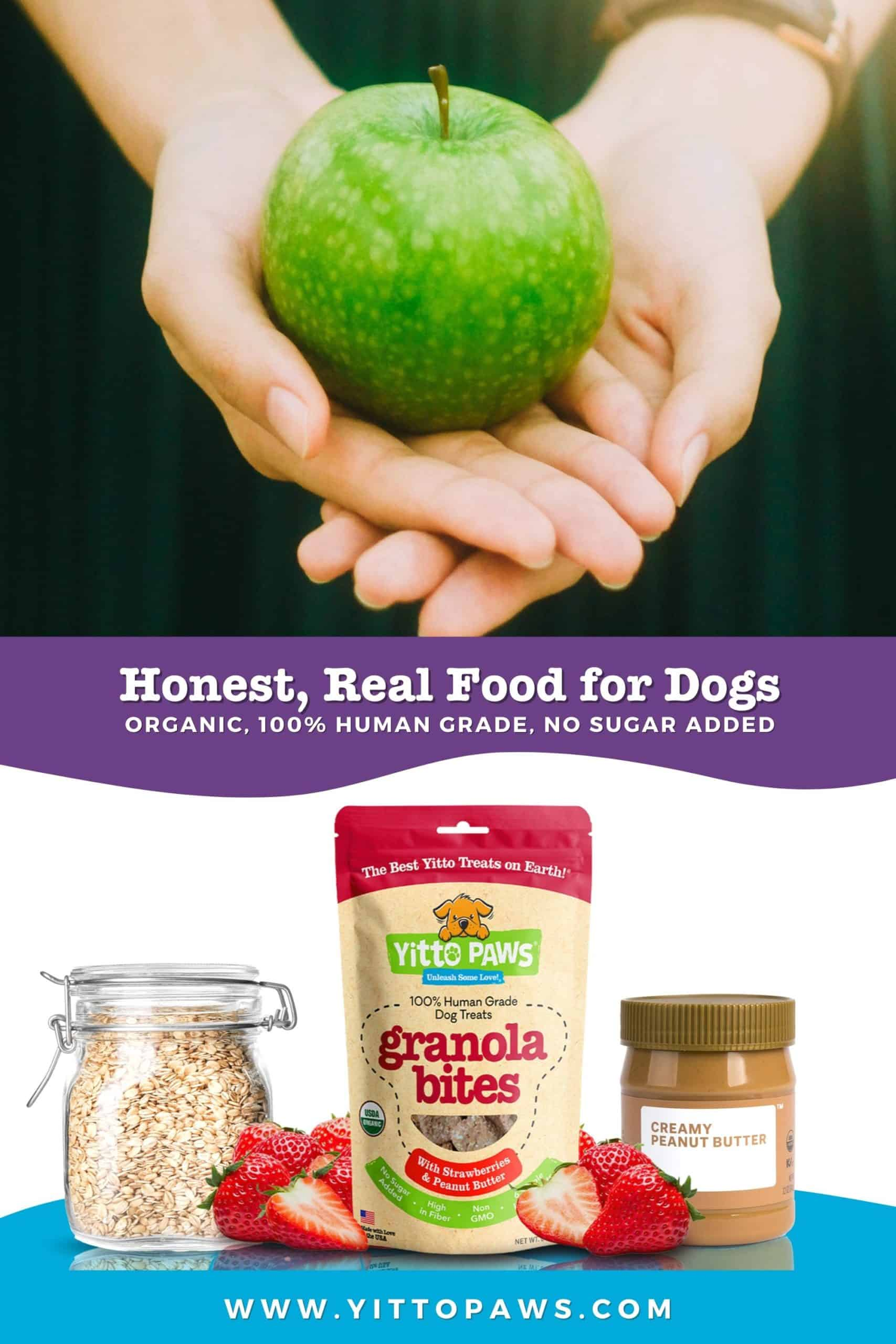 Honest, Real Food for Dogs. Organic. 100% Human Grade. No Sugar Added. Simple Ingredients.