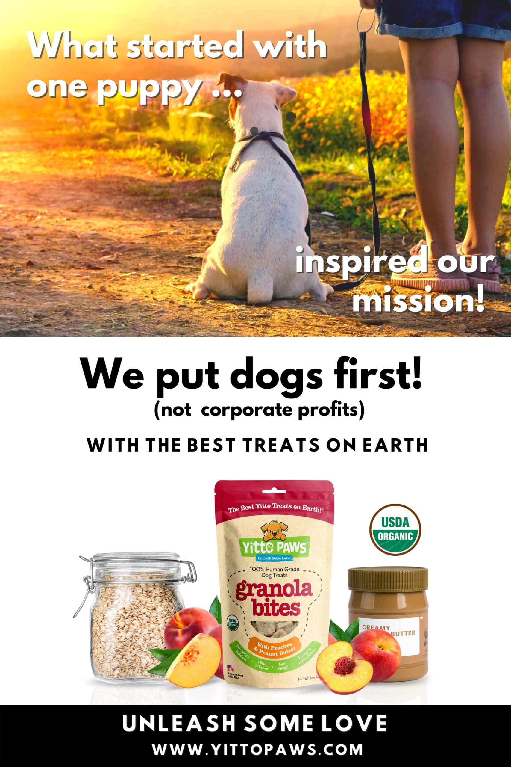 Putting Dogs First means prioritizing the health and happiness of our dogs over corporate profits.