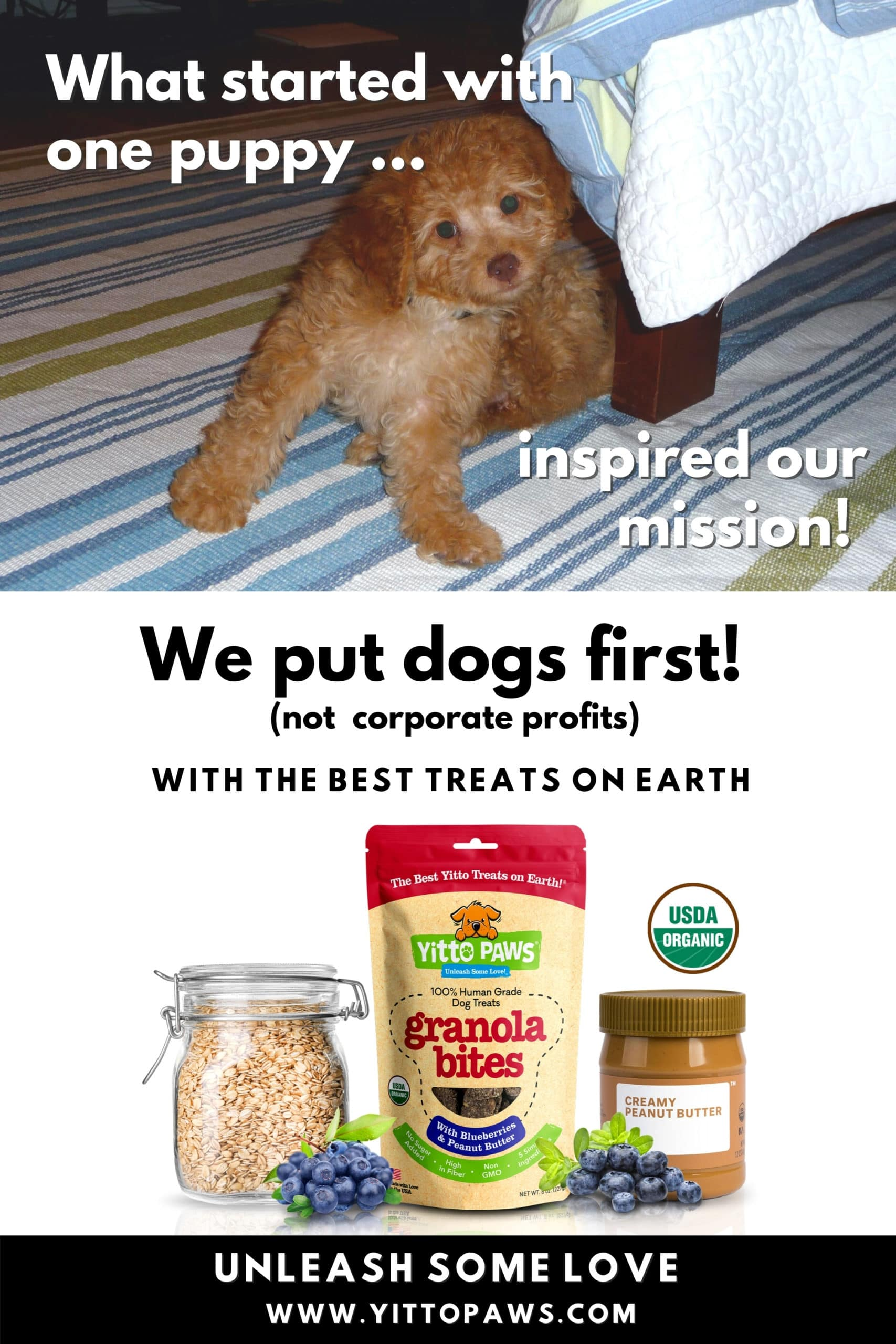 The Yitto Paws Story ... What started with one puppy turned into our mission to make our organic dog food recipes available to dogs everywhere!