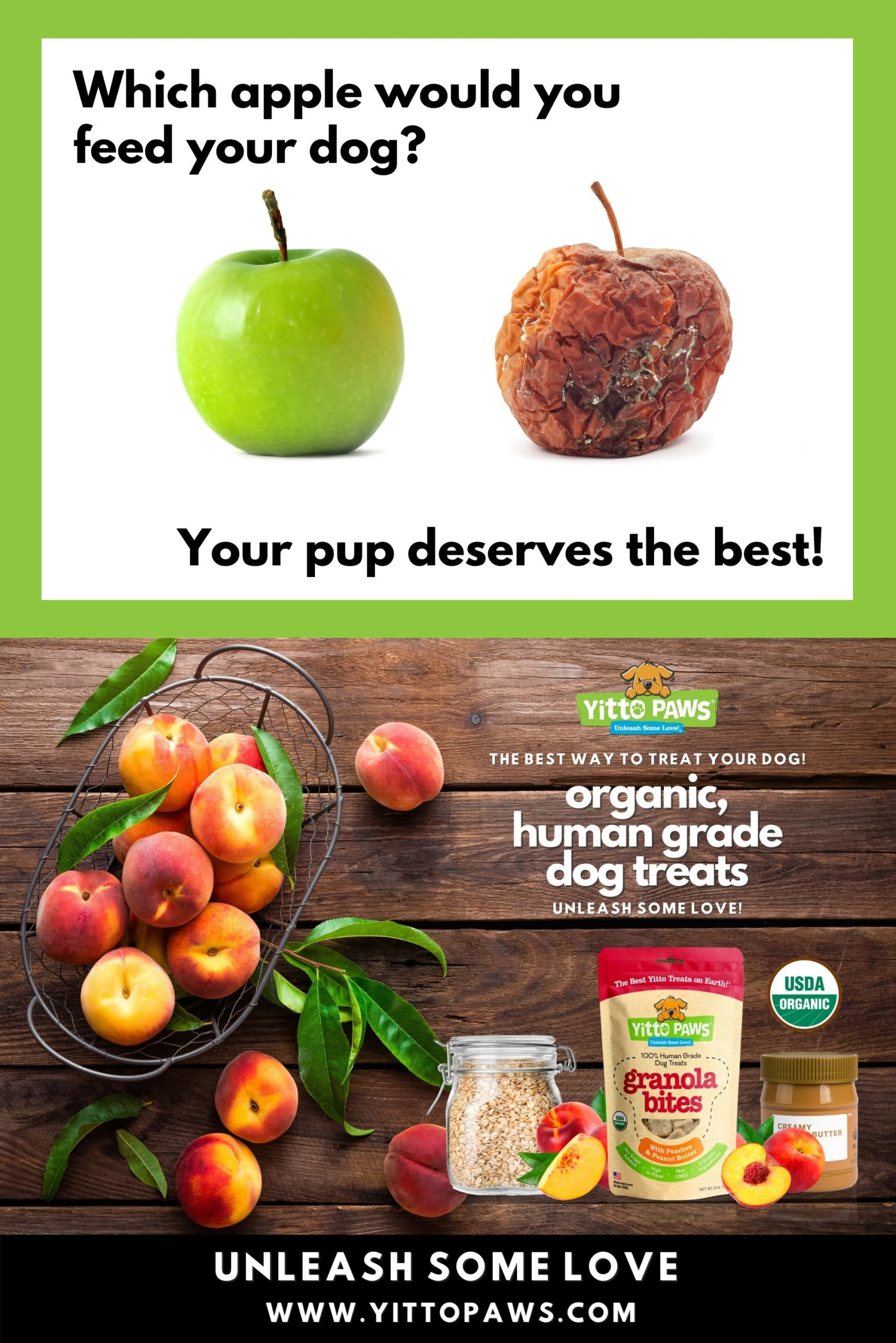 Yitto Paws Puts Dogs First by making 100% Human Grade Dog Treats!