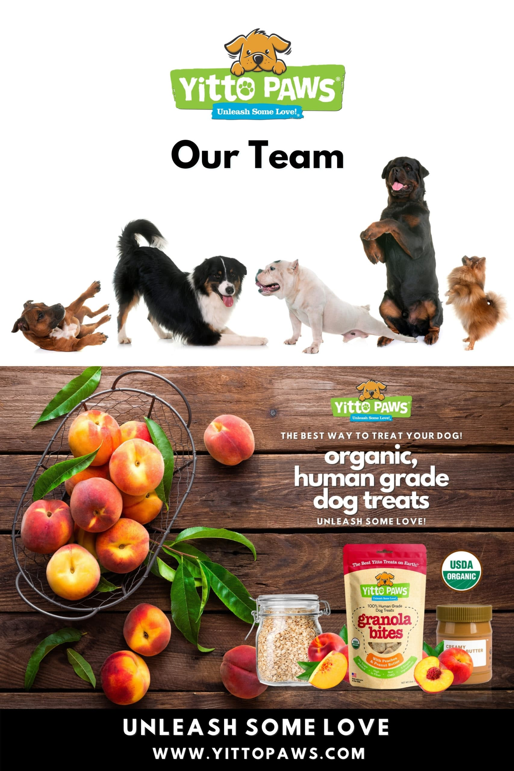 Our team is small but strong ... and we're ALL dedicated to Putting Dogs First by making Yitto Paws the Best Way to Treat Your Dog!