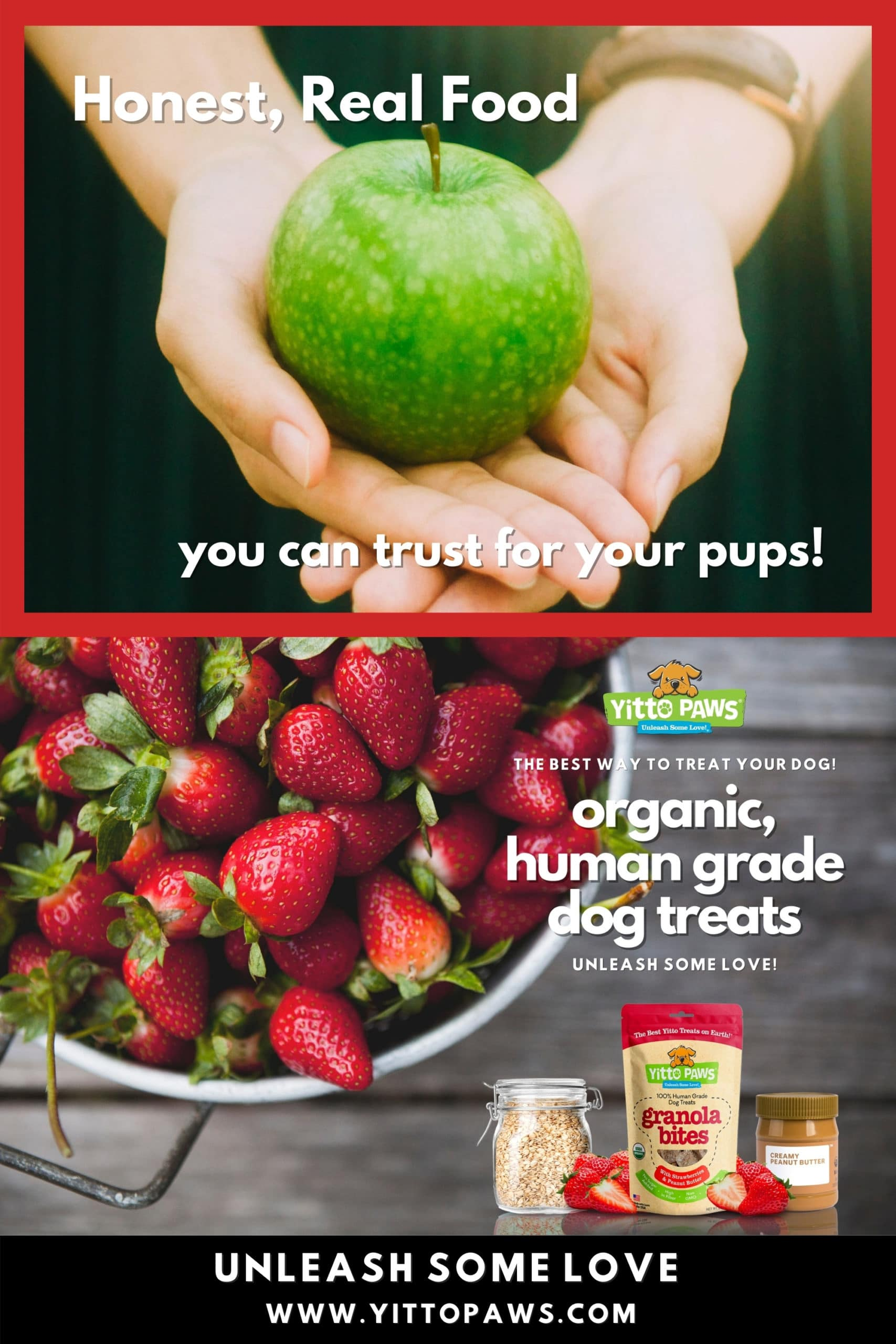 Your Dog deserves honest food you can trust