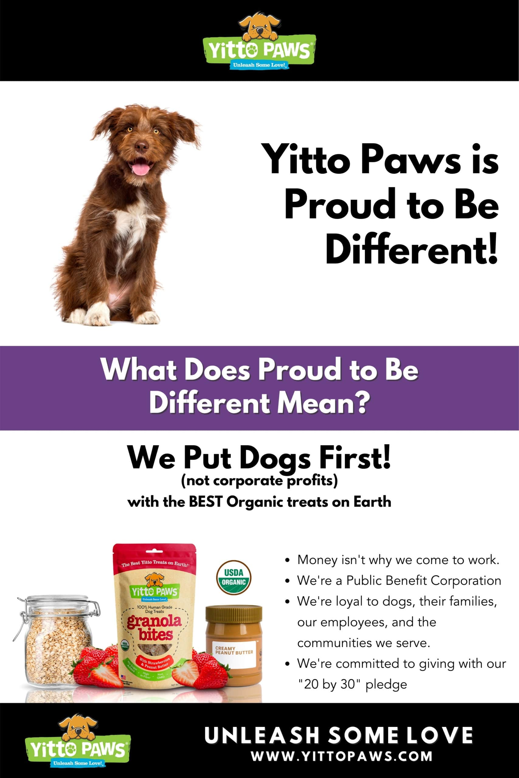 Yitto Paws is Proud to Be Different by Putting Dogs First with the best organic dog treats on earth!